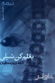 بغلم کن شبلی (مجموعه شعر)